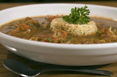 Bowl Of Gumbo Royalty Free Stock Images