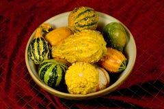Free Bowl Of Ornamental Squash Stock Image - 337901
