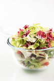 Bowl Of Salad Greens Royalty Free Stock Images