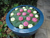 Bowl of offering flowers. At Jim Thompson House Bangkok Stock Images