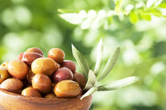 Bowl of olive in garden Stock Photography