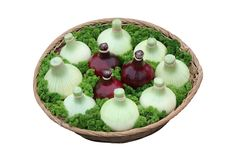Bowl of Onions. Stock Image