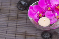 Orchids with candle and massage stones Stock Images