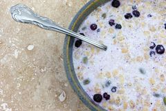Bowl of organic breakfast cereal with milk dried blueberries and pumpkin seeds plus a spoon in the food. Top close view of organic breakfast cereal with milk royalty free stock image