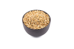 Bowl of organic oat grains Royalty Free Stock Photography