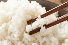 Bowl of Organic White Rice Royalty Free Stock Photos