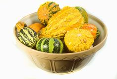 Bowl of Ornamental Squash Stock Photography
