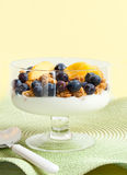 Bowl of Peaches and Blueberries. A Fresh Bowl of Peaches and Blueberries with Granola Over Yogurt Royalty Free Stock Photography