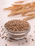 Bowl of pelleted compound feed Royalty Free Stock Images