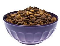 Bowl of Pet Food Royalty Free Stock Photography