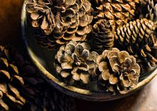 Bowl of Pine Cones Stock Images