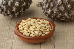 Bowl with pine nuts Royalty Free Stock Photography