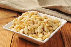 Bowl of pine nuts Stock Image