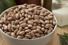 Bowl with pinto beans Royalty Free Stock Image