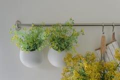 Bowl of plants hang on bar rail Stock Image