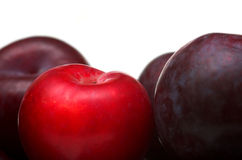 Bowl of Plums Royalty Free Stock Images