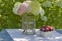 Bowl with plums and a vase with hydrangeas Royalty Free Stock Photography