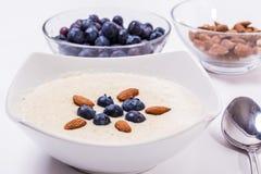 Bowl of porridge with berries Royalty Free Stock Photos