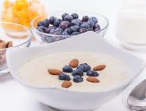 Bowl of porridge with berries Stock Images