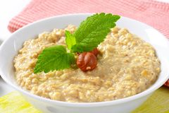 Bowl of porridge royalty free stock photo