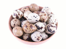 Bowl of quail eggs royalty free stock images