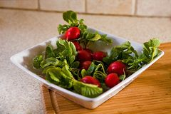Bowl of Radishes Royalty Free Stock Images