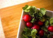 Bowl of Radishes Royalty Free Stock Photo
