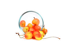 Bowl of Rainier Cherries Royalty Free Stock Images