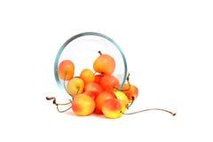 Bowl of Rainier Cherries. Rainier cherries in a glass bowl white background Royalty Free Stock Images
