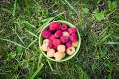 A bowl with raspberries Stock Image