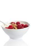 Bowl of raspberry dessert Royalty Free Stock Image