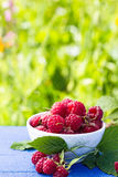 Bowl of raspberry on green background. Vertical Stock Photography
