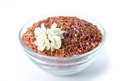 Bowl of raw brown rice and jasmine flower Stock Images