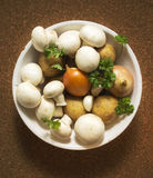 Bowl with raw mushroom,onions, potatoes, garlic, parsley Royalty Free Stock Photos