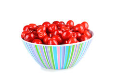 Bowl of red cherries isolated on white Stock Images