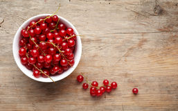 Bowl of red currant berries Royalty Free Stock Photography