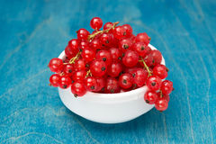 Bowl of red currant on a blue wooden background Stock Photos