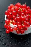 Bowl of red currant with drops of water on black background Royalty Free Stock Photos