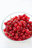 Bowl of red currant on light background Royalty Free Stock Images