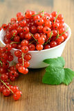 Bowl with red currant on table Royalty Free Stock Images