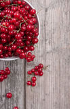 A bowl of red currants. A bowl of fresh red currants on a wooden table Royalty Free Stock Photography