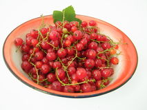 Bowl red currants. A bowl of red currants on a white background Royalty Free Stock Image
