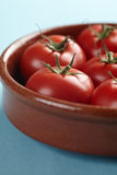 Bowl with red fresh vine tomatoes Royalty Free Stock Photo