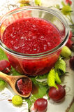 Bowl of red gooseberry jam Stock Photo