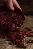 Bowl of red haricot beans on sackcloth. Stock image Stock Photography