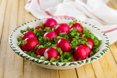 Bowl of red radishes and green onions. On a wooden background Royalty Free Stock Photo