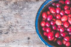 Bowl of Red Round Fruits Royalty Free Stock Image