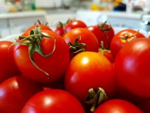 A bowl with red tomatoes close-up. Whole fruit. White Kitchen on the background. Summer food. Still life vegetables Royalty Free Stock Images