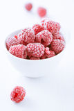 Bowl of refreshing raspberries. Bowl of refreshing frozen raspberries covered in frosting for a delicious healthy dessert, tilted closeup angle Stock Photos