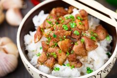 Bowl of rice with meat Stock Image